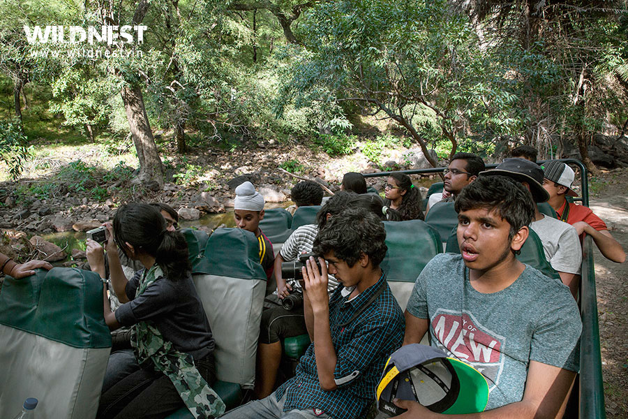 kids school trip in wildlife ranthambore