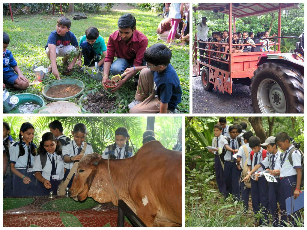Smart Eco Park: day tours & activities for kids in Mumbai