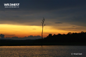 sunrise photography at nagarhole national park