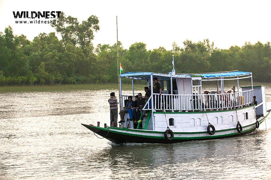 boat ride at Sundarbans Tiger Reserve