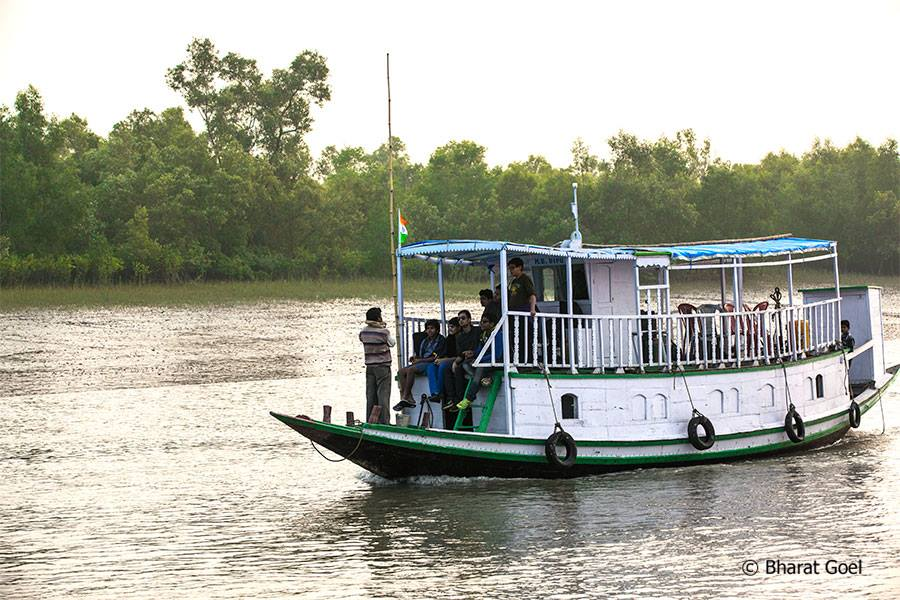 Boat Safari at sundarban tiger reserve