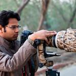 wildlife photograoher india bharat goel