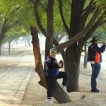 bird walk at sultanpur national park