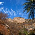 Lanscape Photography at Sariska Tiger Reserve