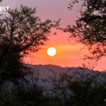Sunrise at Sariska Tiger Reserve