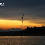 sunrise photography at nagarhole national park